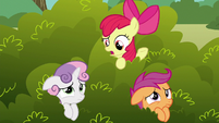 """Apple Bloom """"what do you think that griffon wants?"""" S6E19"""