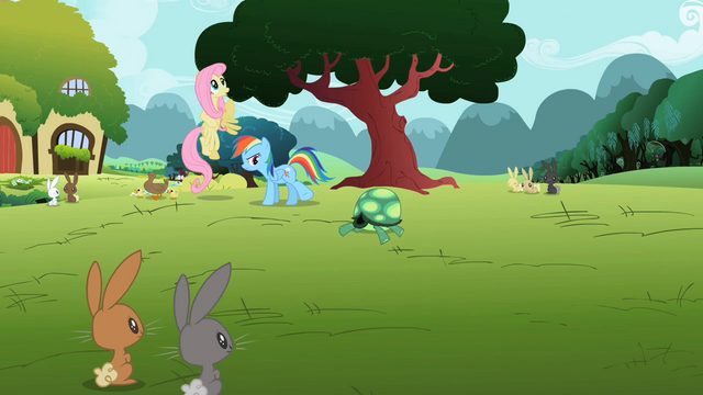 File:Rainbow Dash go away tortoise S2E7.png