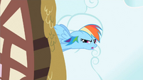 Rainbow Dash no sign S2E8