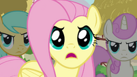 "Fluttershy ""And they trashed our critter picnic!"" S3E3"