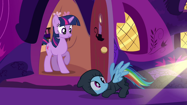 File:Rainbow Dash falling in front of Twilight S2E16.png