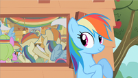 Rainbow Dash likes this S2E8