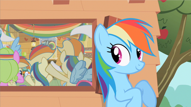 File:Rainbow Dash likes this S2E8.png