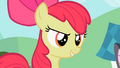 Apple Bloom 'I can just feel it' S2E6.png