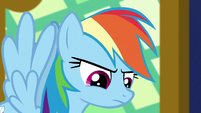 Rainbow Dash glares at Rarity S5E3