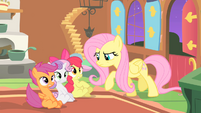 Fluttershy everfree much danger S1E17