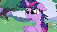 "Twilight Sparkle ""This is everything"" S2E03"