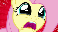 Fluttershy shrieks in horror S4E03