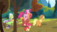 The Apples walking while Pinkie is hopping S4E09