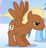Pegasus Meadow Song S1E16