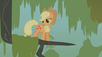 Applejack stuck in a tree branch S1E09
