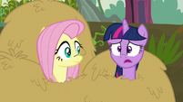 "Twilight ""I was so sure it would"" S5E23"