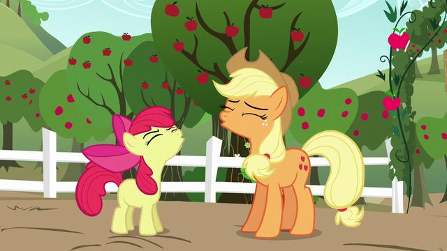"File:Apple Bloom and AJ ""Yee-hoo!"" S5E17.png"