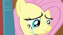 Fluttershy crying S4E16