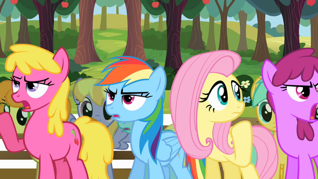 File:Everypony upset2 S02E15.png
