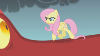Fluttershy walking up to the dragon S1E07