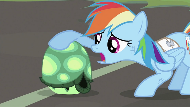 File:Rainbow Dash petting Tank S2E07.png