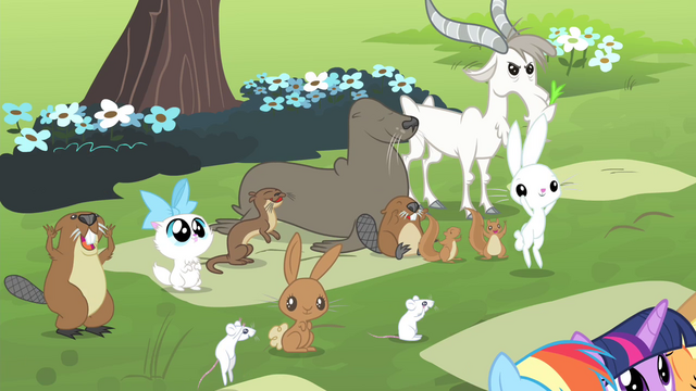 File:Animals cheering for Fluttershy S4E14.png