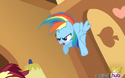 Rainbow Dash eyelash animation error S3E13