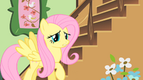 Fluttershy about to leave her cottage S1E22