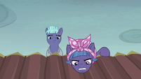 McColt mare accuses Twilight and Fluttershy of being spies S5E23