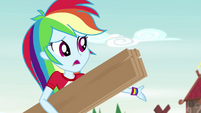 """Rainbow Dash """"end up in the woods again"""" EG4"""