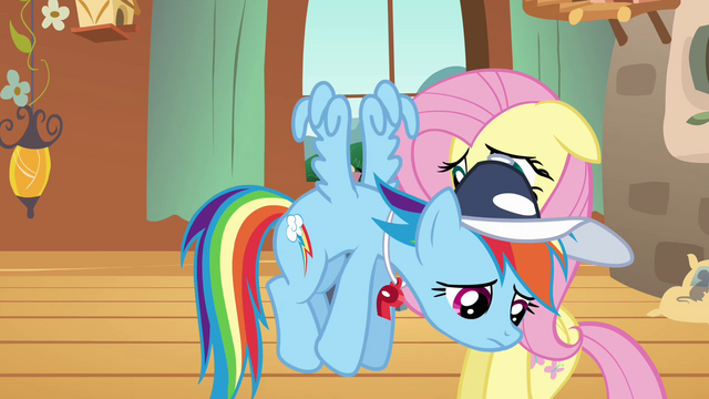 File:Rainbow Dash fails to persuade Fluttershy S2E22.png