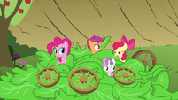 Sweetie Belle moving wheel away from her head S3E4