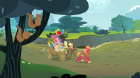Apple Bloom '...the land' S4E09