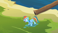 Rainbow Dash 'and she's magic' S2E08
