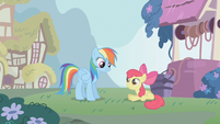 Rainbow Dash talking to Apple Bloom S1E12