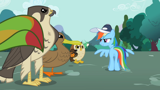 "File:Rainbow Dash ""You'd better"" S2E07.png"
