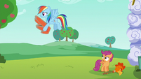 Rainbow carries cardboard wings away S6E14