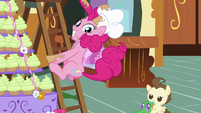 Pinkie slides down ladder S5E19