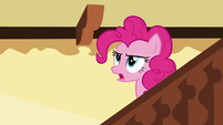 "Pinkie ""And I never break a Pinkie Promise!"" S5E19"