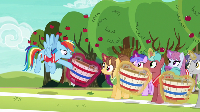 File:Rainbow Dash addressing the unicorns S6E18.png