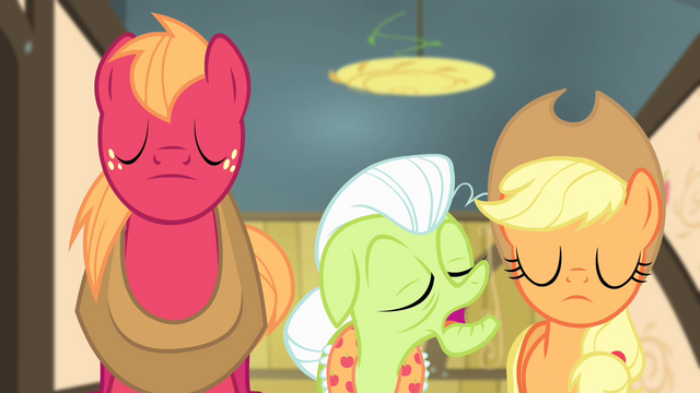 "File:Granny Smith ""So, we here have decided"" S4E17.png"