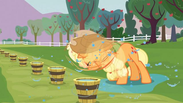 File:Applejack Shake Dry S3E08.png