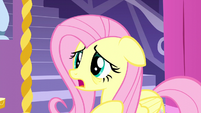"Fluttershy ""how did it get into ours?"" S5E13"