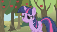 Twilight even more worried S1E04