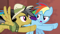 "Rainbow Dash ""if Quibble says go over him"" S6E13"