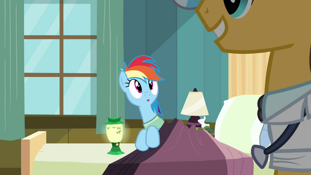 File:Rainbow Dash blanket2 S02E16.png