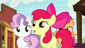 Apple Bloom getting more excited S5E6.png