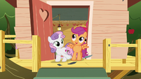 """Scootaloo """"can you believe it?"""" S6E19"""