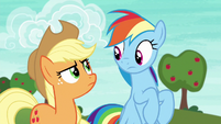 Applejack glaring at Rainbow Dash S6E18