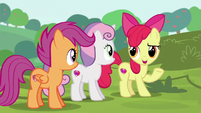 "Apple Bloom ""know what they're doin'"" S6E14"