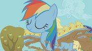 Rainbow Dash carrying baby chicks over the mud-filled trench S01E13