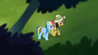 Rainbow walking with Daring Do S4E04