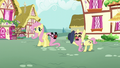 An elder pony tips his hat to Fluttershy S5E19.png
