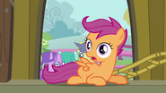 Scootaloo gazing at Pinkie S3E4